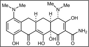 Fichier:Groupe 4-Minocycline.png